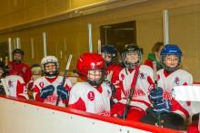 Ледовое шоу для юных хоккеистов во Дворце Спорта
